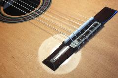 bastien-burlot-alkemia-guitar22